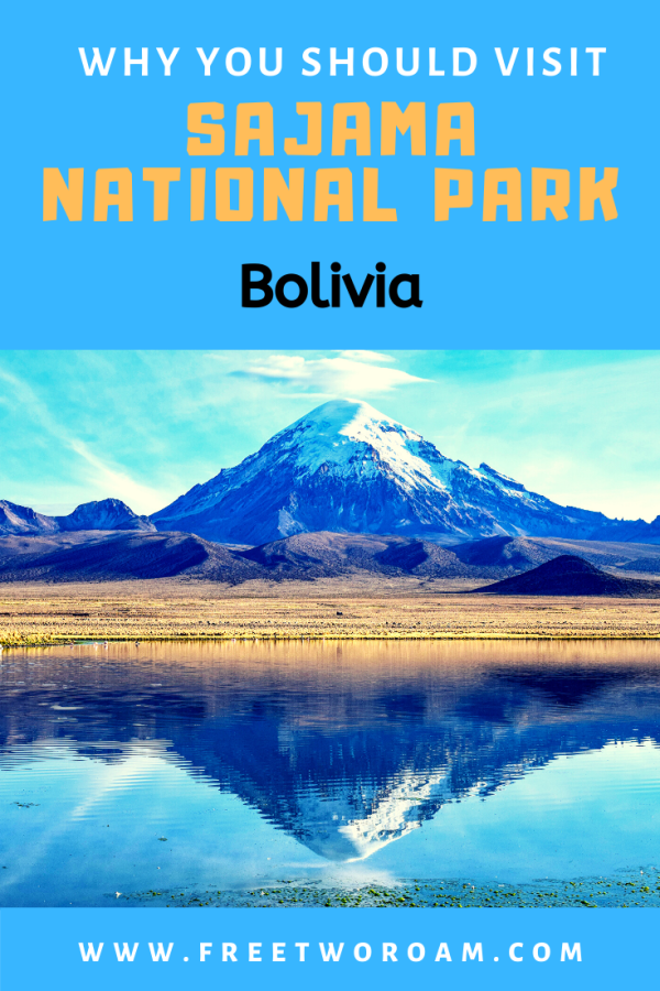 Why You Should Visit the Sajama National Park