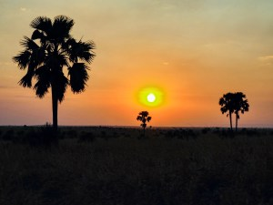 Another sunset in Murchison Falls National Park