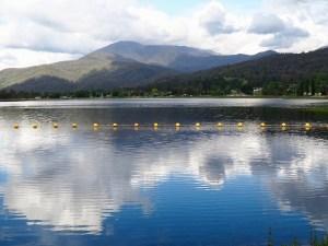 The pondage Mt Beauty