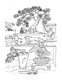 Lets Color Some Pottery Coloring Book