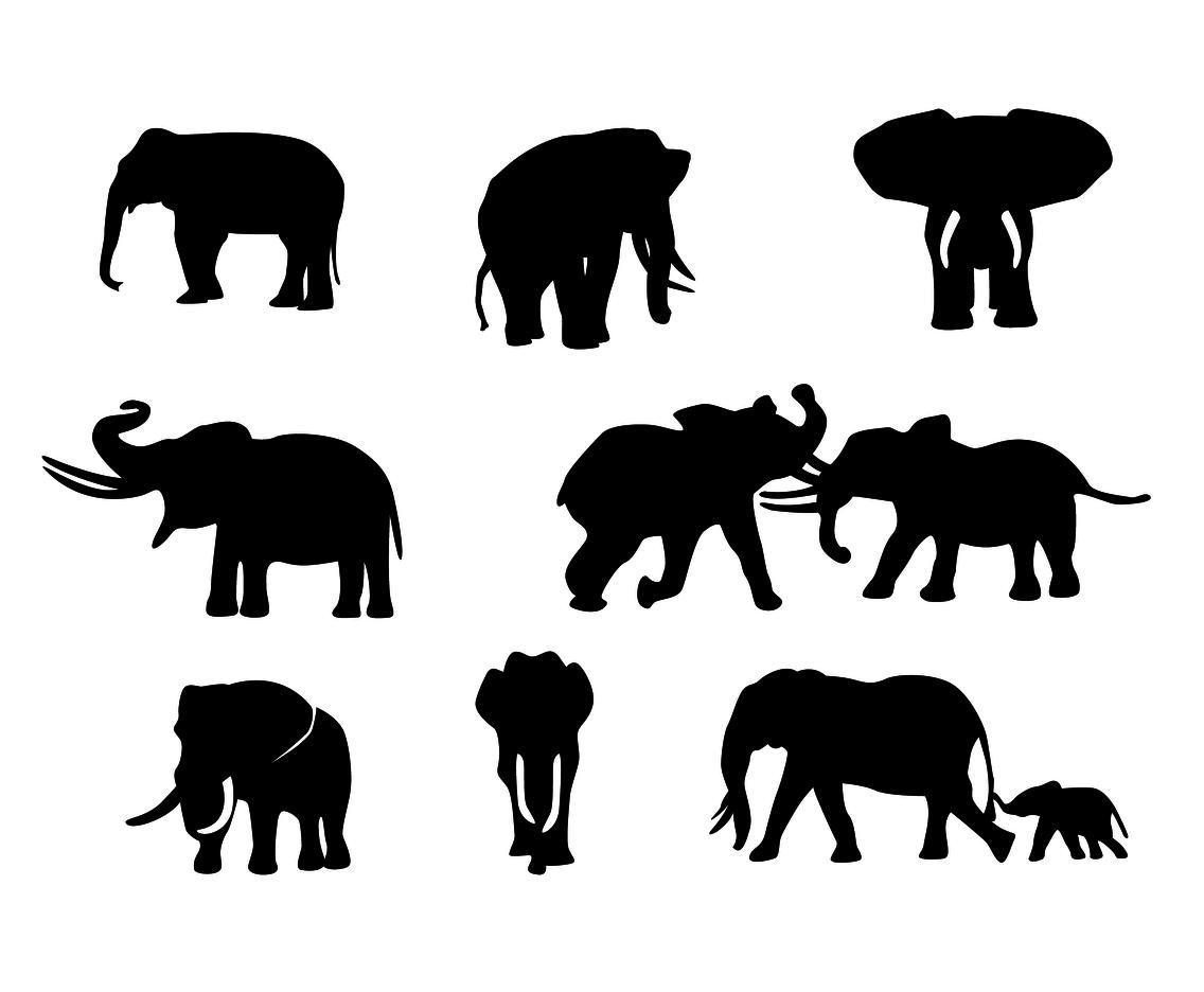 Free Elephant Silhouette Vector Vector Art Amp Graphics