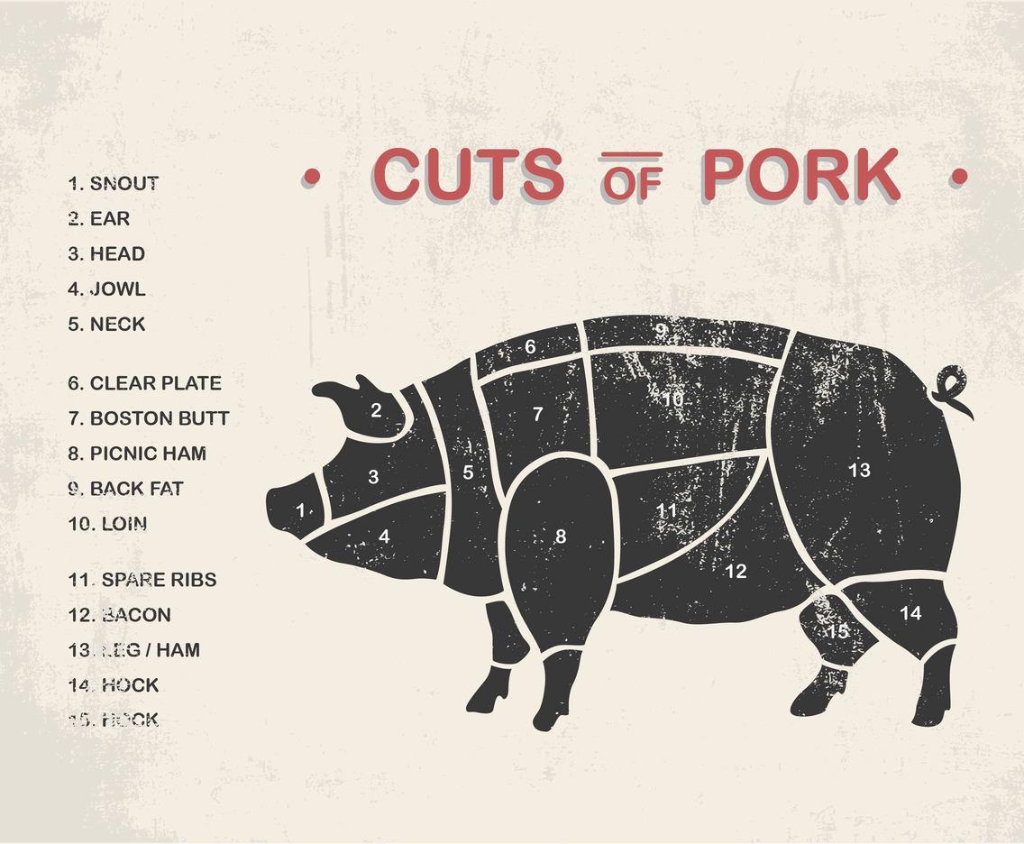 hight resolution of cuts of pork vectors