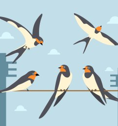 swallow illustration vector [ 1136 x 936 Pixel ]