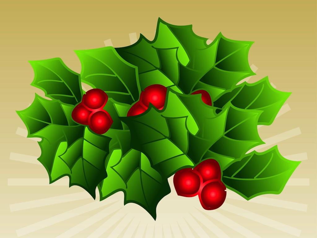 Mistletoe Vector Art Amp Graphics