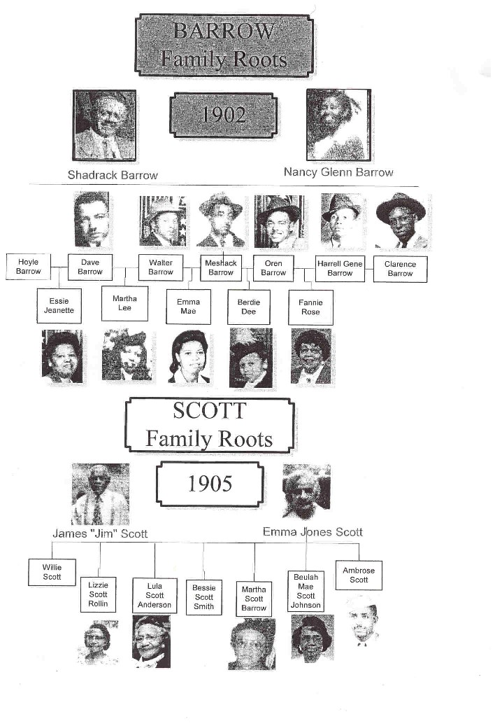 The Barrow Roots/The Scott Roots