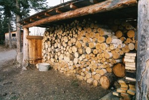 GStream_Firewood