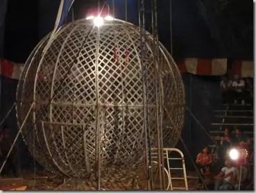 Circus Honduras 5