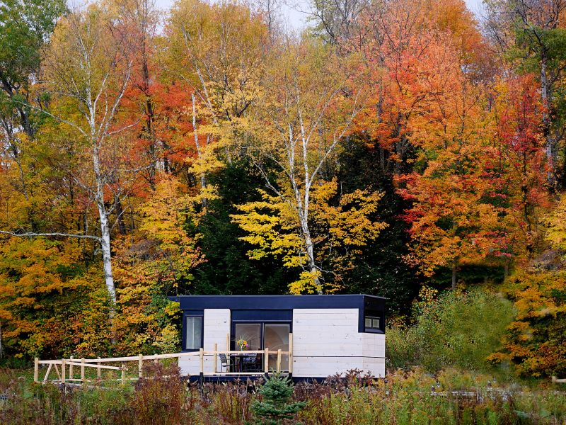 Wheel Pad wheelchair accessible tiny house. in a field with autumn leaves.