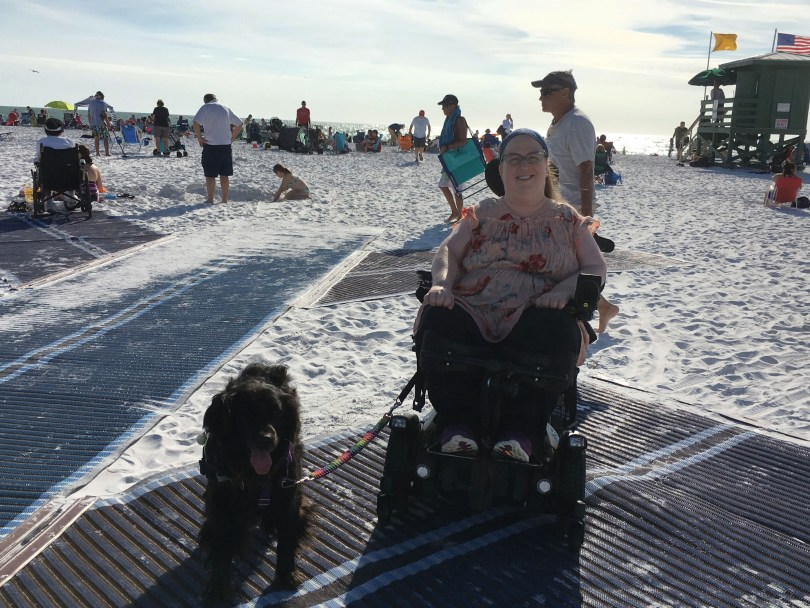 7 Wheelchair Accessible Sarasota, Florida Places to Visit