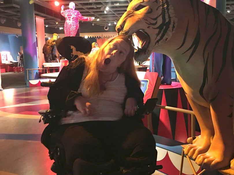 Enjoying my visit to the Ringling Circus museum in wheelchair accessible Sarasota, Florida. Tiger expressing his views about the history of wild animals in circuses.