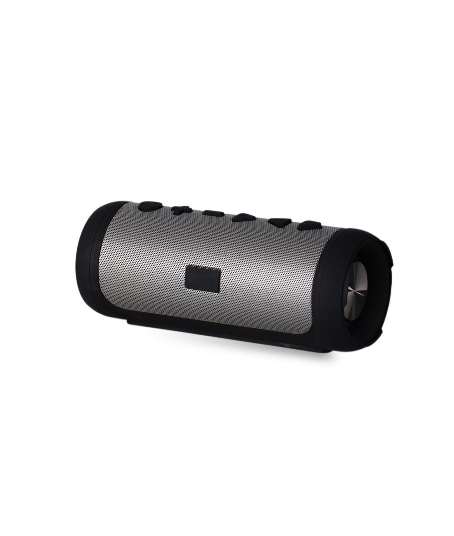 Portable Wireless Bluetooth Speaker FW210