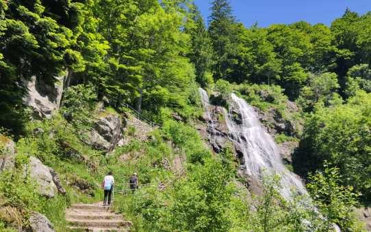 Rundwanderung Todtnauer Wasserfall Hochschwarzwald