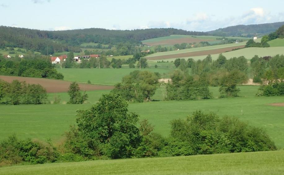 Harald Ohrner  Home