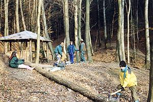 WaldarbeitmitSaegeundAxt