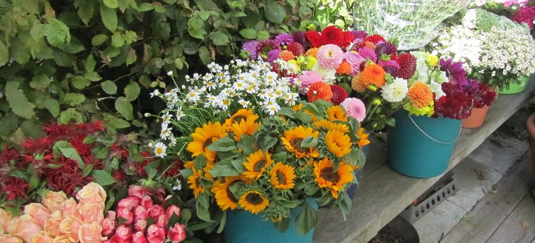 Blumen Workshop  Duftige Strue  FREIRAUM FR DICH
