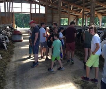 Zeltlager Tag 6 – Wo kommt nochmal die Milch her?