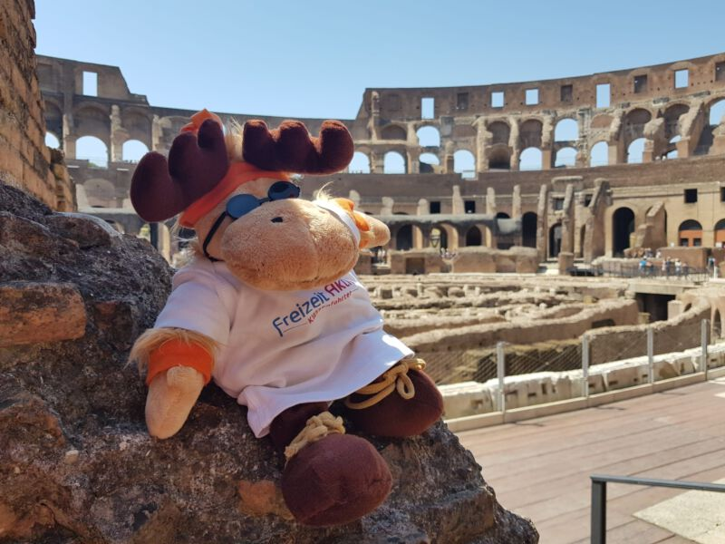 Klassenfahrt nach Rom-Elchi reist