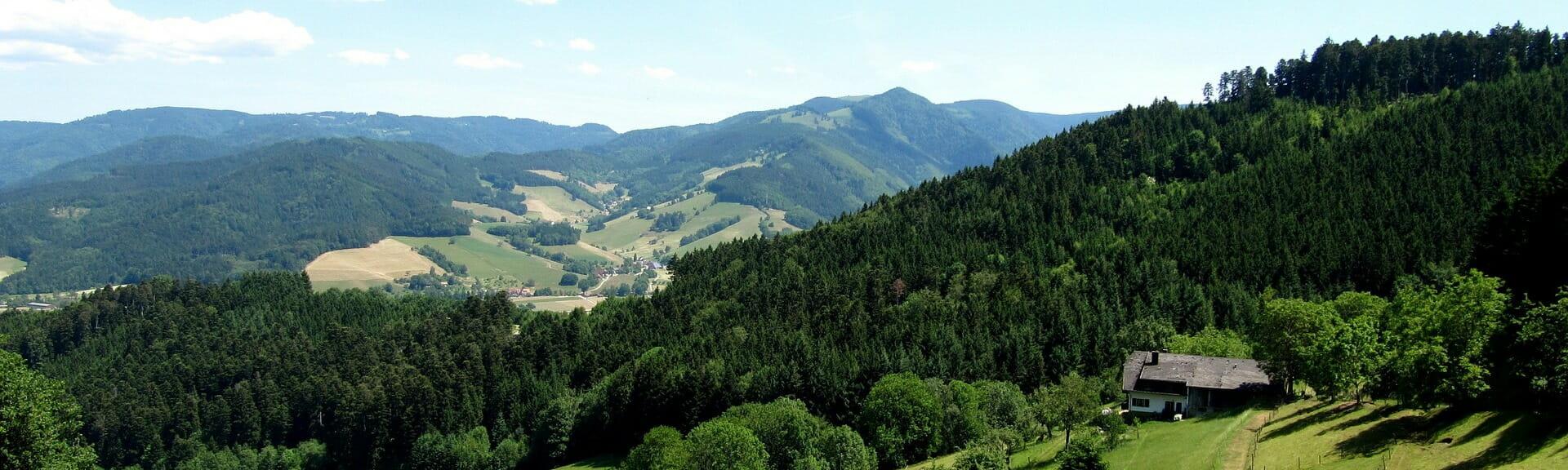 Klassenfahrt Schwarzwald Landschaft