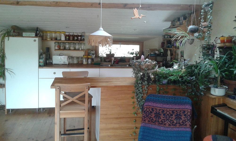 house_kitchen1