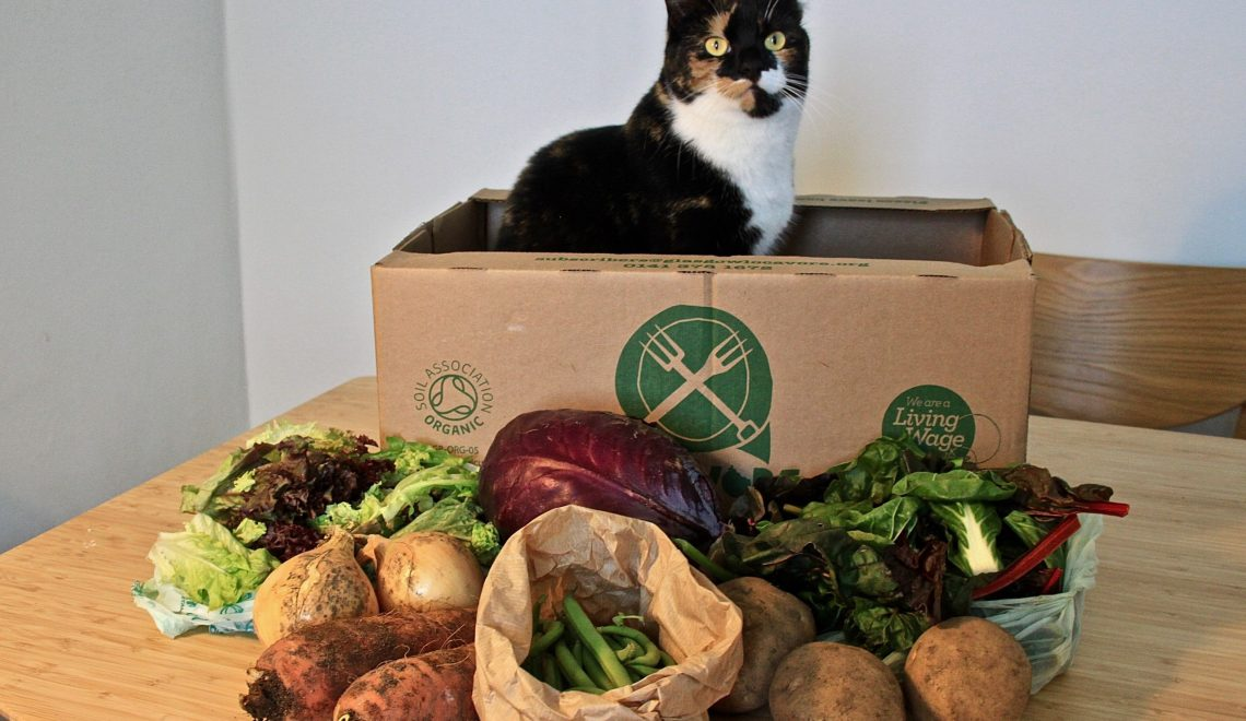 box légumes Ecosse (2)
