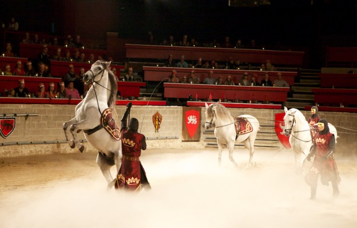 Medieval Time - les chevaux