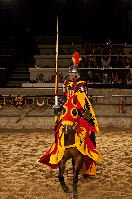 Medieval Time - our Knight