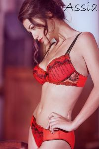 Assia Lingerie : cardinal New push up bra- Exclusive ...