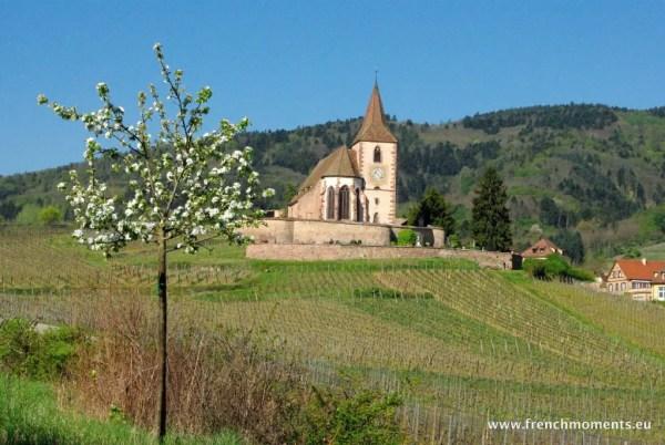 séjour printanier en Alsace : Hunawihr © French Moments