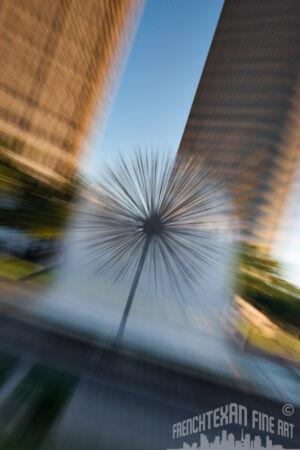 A071 - Urban Dandelion (web)