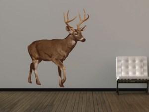 Wildlife animal deer decal wall sticker