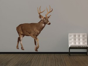 Wildlife animal deer decal wall sticker