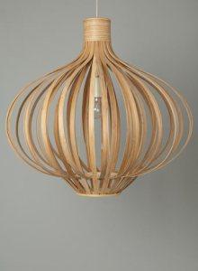 Contemporary fresh design pendant light
