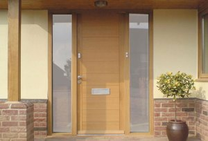 Door style for a modern or contemporary house