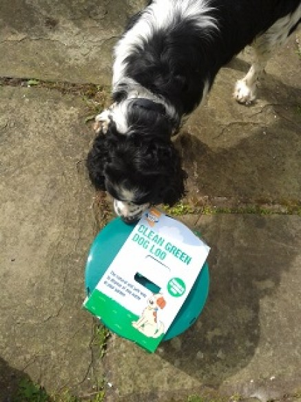 Monty the dog and the Clean Green Dog Loo