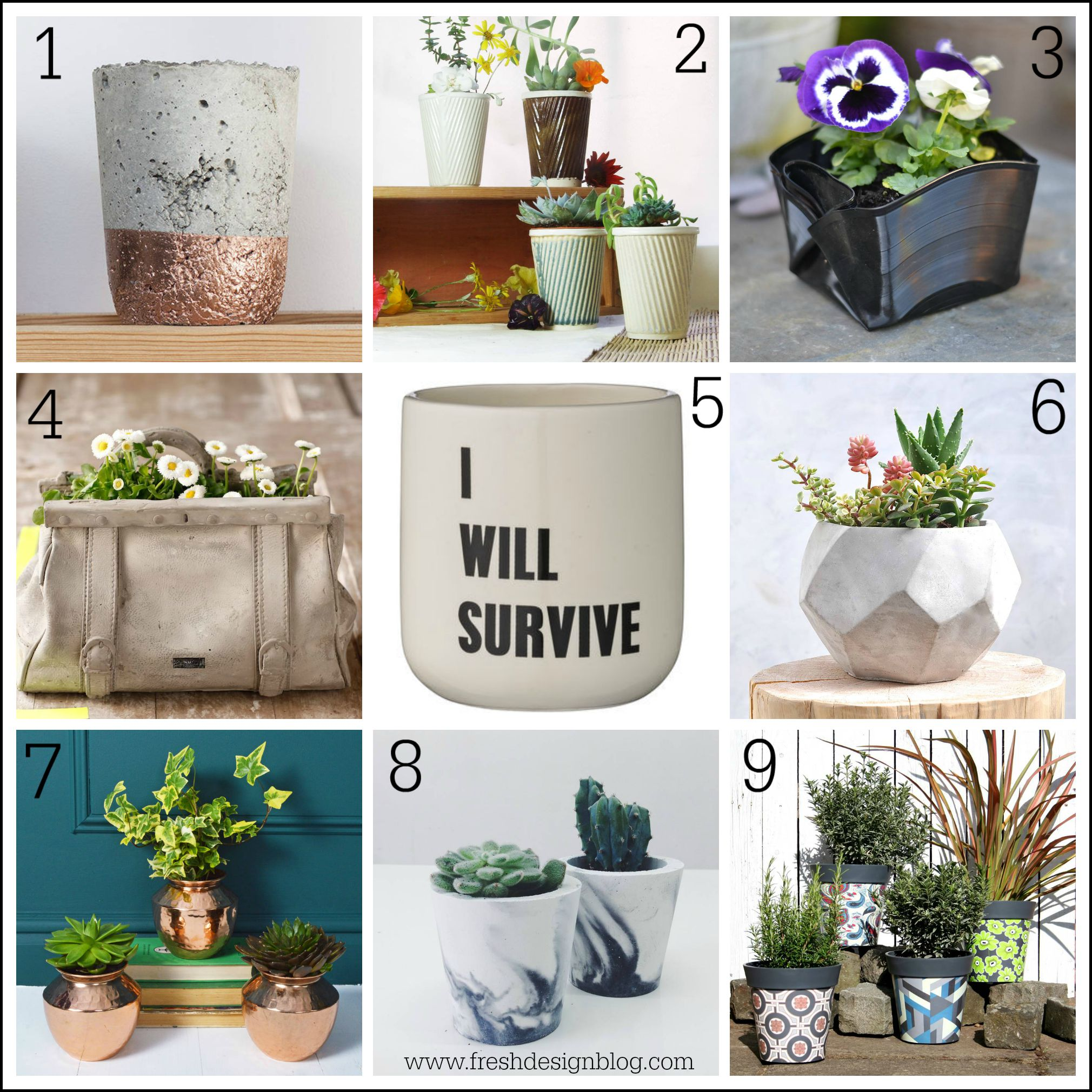 Perk Up Your Planters Stylish Pots For Your Plants