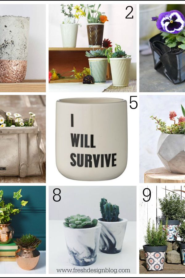 Perk up your planters: Stylish pots for your plants