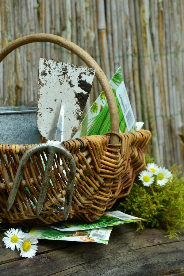 Spring garden projects and blog carnival