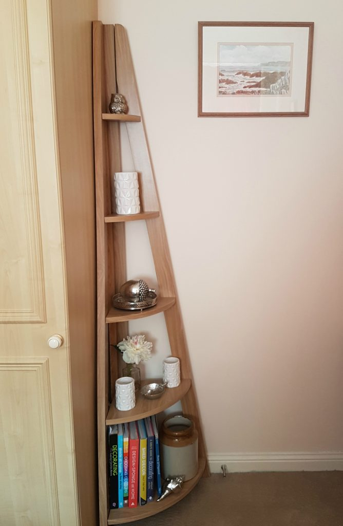 Quinn Contemporary Corner Ladder Style Bookcase From