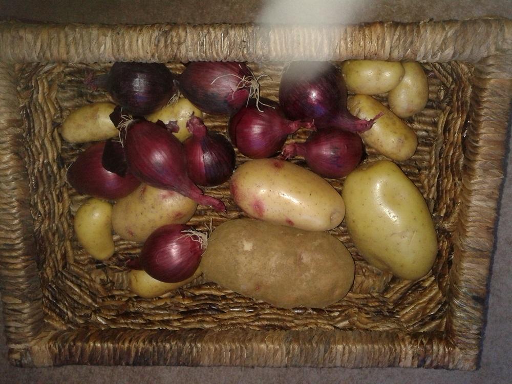 Practical vegetable storage!