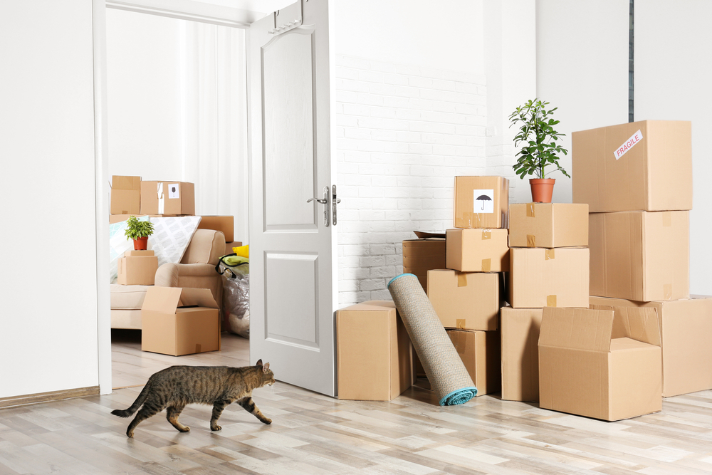 There are lots of hidden costs involved in moving house