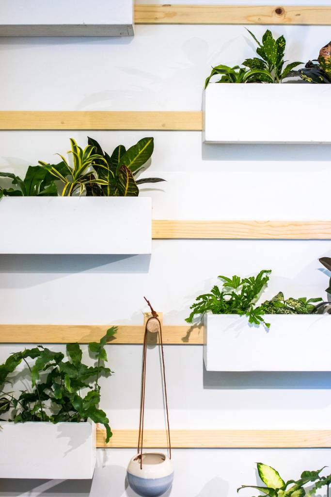 Indoor hanging wall planters offer a fun and quirky way to bring plants into your home