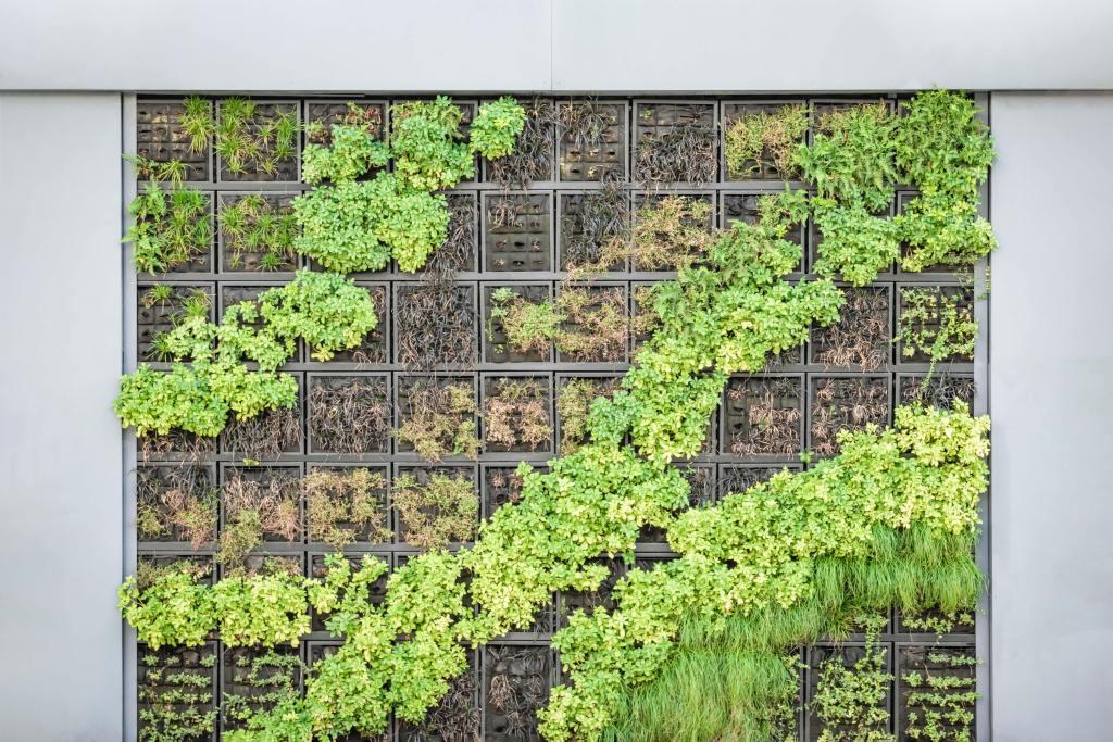 Nice example of a vertical garden growing edible plants