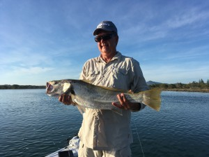 Ken with an 83cm Jewfish.