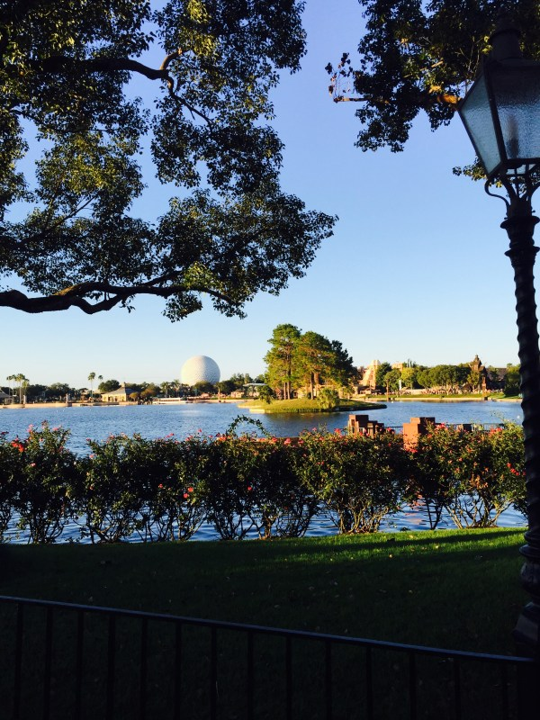 Marathon Training Recap Week 17 | Epcot Food and Wine