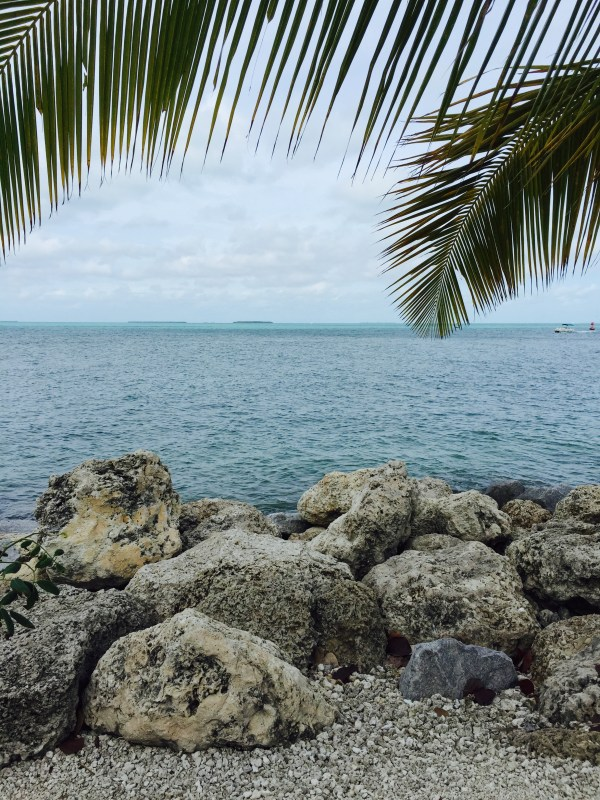 Things to Do in Florida: Key West | Fresh Fit Florida