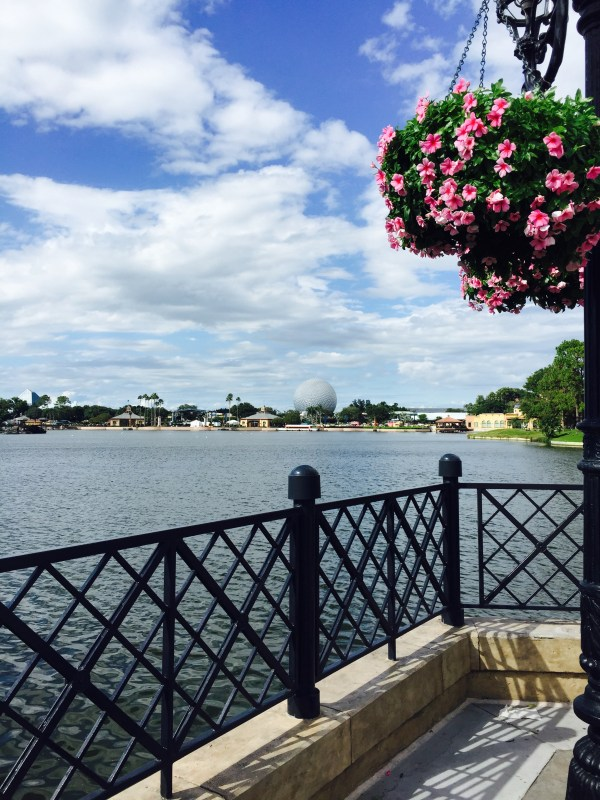 Things to Do in Florida That Aren't the Theme Parks | Fresh Fit Florida