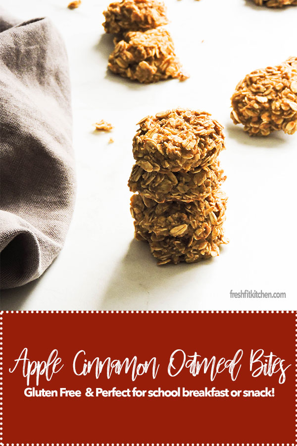 Apple Cinnamon Oatmeal Bites