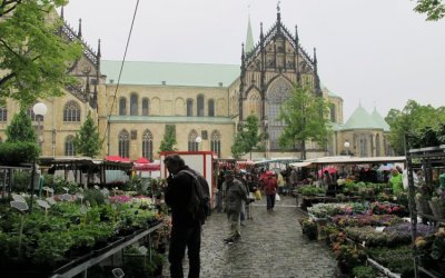 Münster Market, Germany