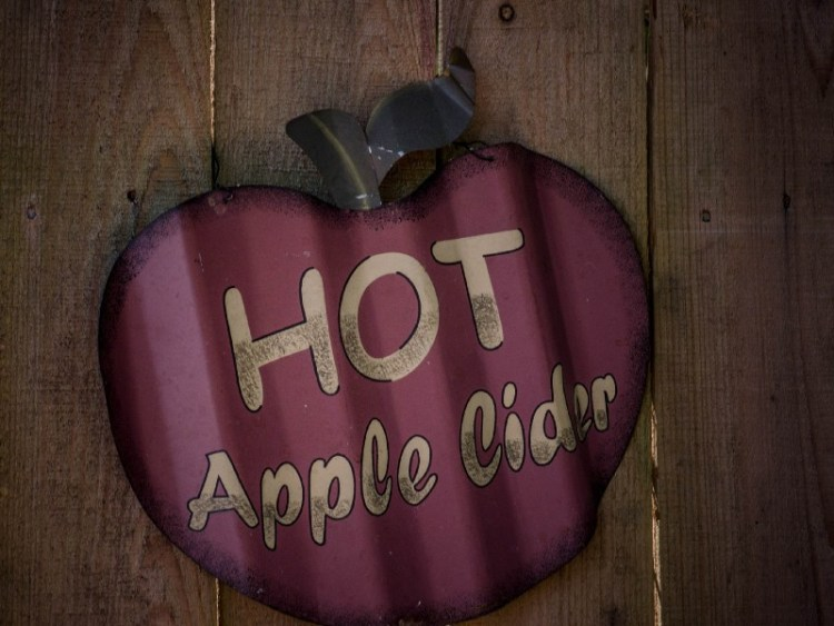 Hot Honey Cider – Warming and delicious!