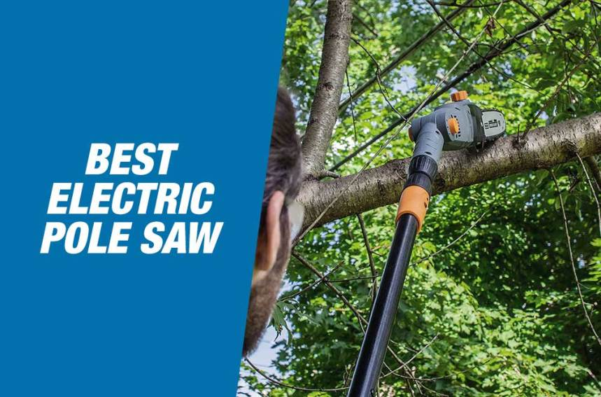 Best Electric Pole Saws 2021 – Reviews & Buying Guide